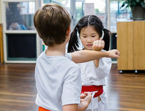 What is the difference between Martial Arts and Self Defence?